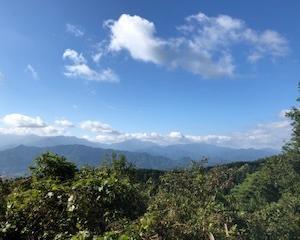 【ハイキング】リハビリも兼ねて高尾山へ!