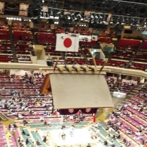 相撲一月場所見学行く