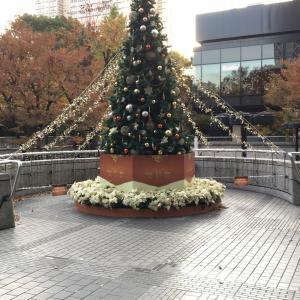 クリスマスツリー 飾る? 飾った? 飾らない?
