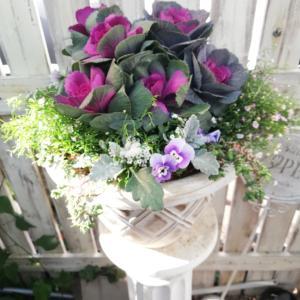 寄せ植えとお正月飾りレッスン