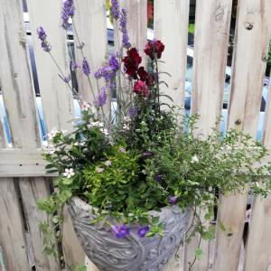 FloraRIEでレッスン&クールマスク納品