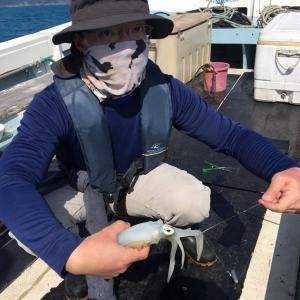 10月14日の釣果です。アオリイカ餌釣りに行って来ました〜!