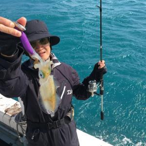10月15日の釣果です。ティップランで出船しました〜!