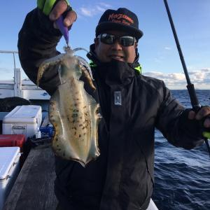11月21日の釣果です。アオリイカ餌釣り&ティップラン&呑ませ釣りに行って来ました〜!