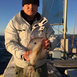 12月8日の釣果です。アオリイカ餌釣りに行って来ました〜!