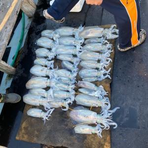 12月1日の釣果です。アオリイカエサ釣りに行って来ました〜!