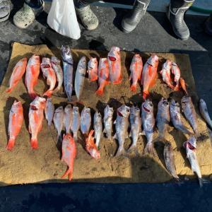 4月22日の釣果です。中深海スロージギングアカムツ狙いに行って来ました〜!
