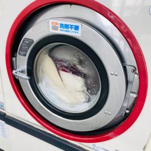 洗濯三昧!