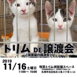 【11/16】トリムDE譲渡会