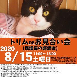 【08/15】トリムDEお見合い会(保護猫の譲渡会)