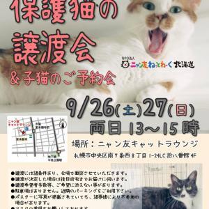 【09/26-27】ニャン友キャットラウンジ 保護猫の譲渡会