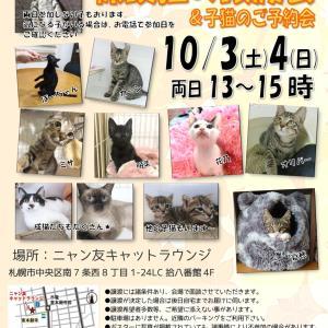 【10/03~10/04】ニャン友キャットラウンジ 保護猫の譲渡会