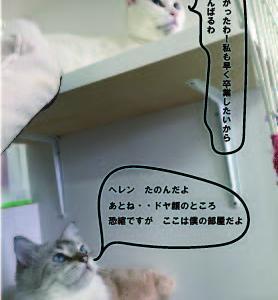 おしゃべりヘレンのラウンジ猫通信①