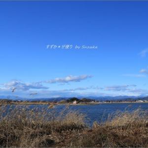 多々良沼冬景