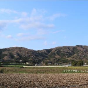 今年も'山桜の里'へ。 ~待望の山桜絶景・プロローグ