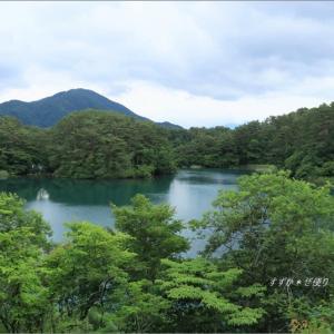 梅雨空の磐梯高原の旅・1 ~毘沙門沼の緑