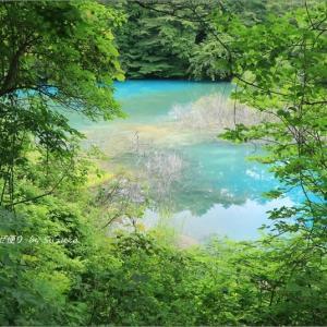 梅雨空の磐梯高原の旅・3 ~神秘の沼たち