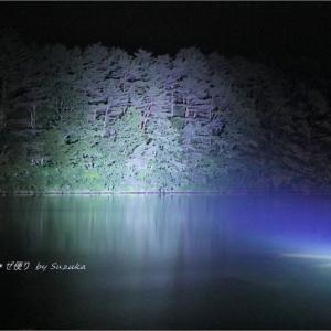 梅雨空の磐梯高原の旅・8 ~弥六沼ライトアップ