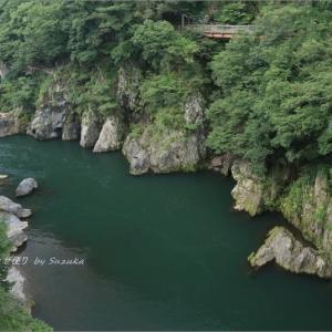 高津戸峡・夏