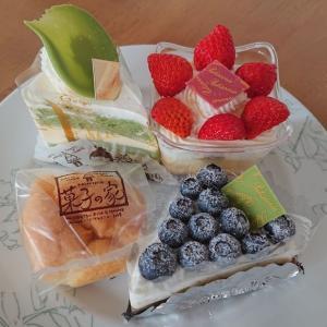 ブルーベリータルト、苺とバナナのプリンアラモード、抹茶と練乳、シュークリーム/菓子の家