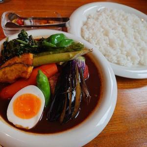 (毎年食)夏季限定 チキンと夏野菜スペシャル/カレーリーフ