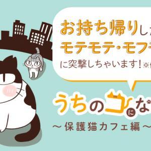 【配信中】保護猫漫画「うちのコになるかい?」