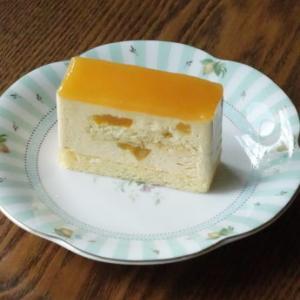 杏のババロアケーキ