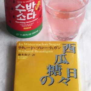西瓜サイダーを飲んで『西瓜糖の日々』を読み返す+カラピンチャの植え替え