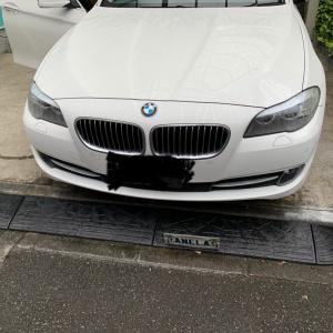 BMW 5シリーズ ドアトリム塗装