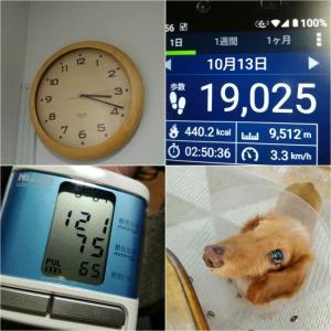 おはようございます(゚ω゚)令和元年10月14日.月曜日.赤口.体育の日