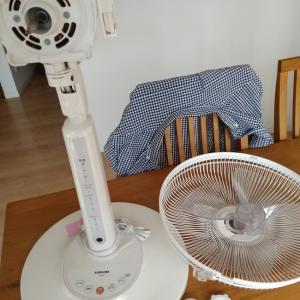 もう扇風機は要らないかと思いきや!