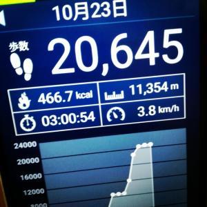 本日のウォーキング歩数です(*^^*)