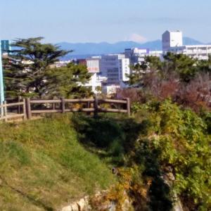 浜松城から富士山