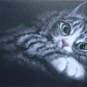 猫3(習作)