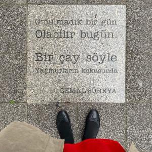 雨を詠むトルコの詩人