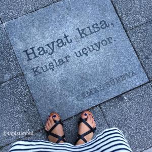 詩を愛するトルコ人