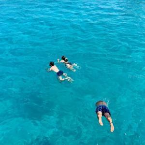 ツツジを摘んだら、トルコ地中海リゾートがすぐそこに