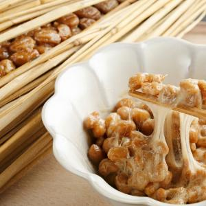もはや納豆は「食べる薬」と言って良い、身体にとって悪い要素は絶無