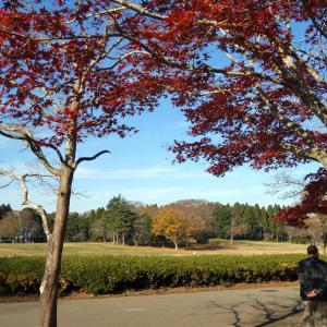 Go To イート&昭和の森