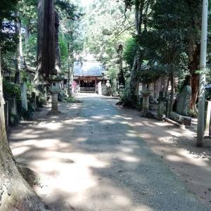 日吉神社境内でリハビリウォーク