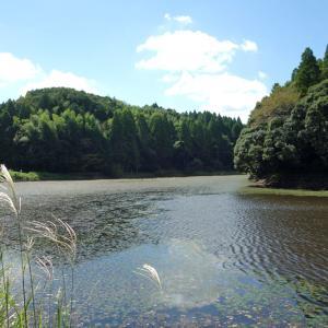 丑ヶ池(うしがいけ)親水公園
