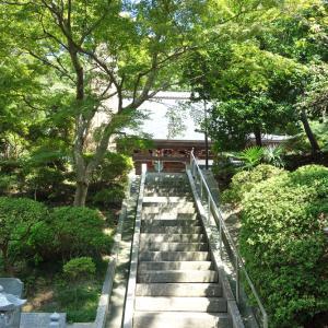 最福寺でリハビリ・ウォーク