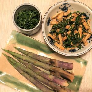 新鮮な採りたて山菜が私の身体に起こした奇跡!すごいダイエットになりそうです。