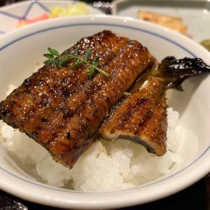 海山の幸、鰻が揃う贅沢に乾杯!湯河原「富士屋旅館」夕食編