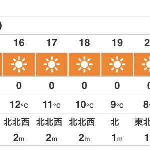 暖かい冬!