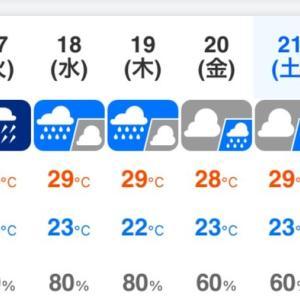 今日も、豪雨?