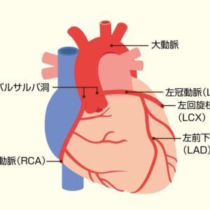 心臓の話2