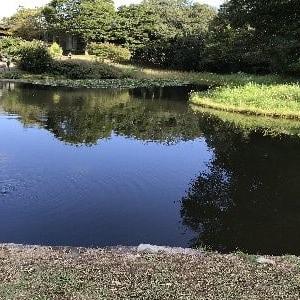 秋らしくなってきた爽やかな空気に誘われて森林公園へ・・・!(^^)!