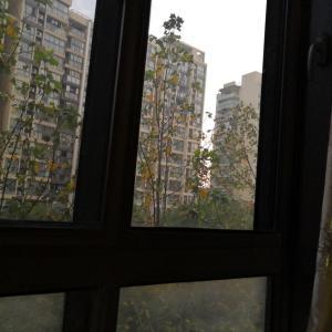 上海の施設で慰問LIVE