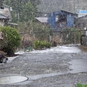 雪舞う~ 津久井青野原     (2-1)